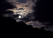 Night landscape with the moon Stock Images