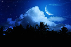 Night landscape with the moon Royalty Free Stock Images