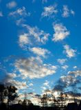 Night landscape panorama. Black silhouette of trees and roof houses on background blue sky with white clouds. night landscape panorama. evening twilight and Royalty Free Stock Photography