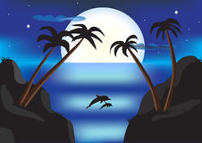 Night landscape with sea, palms, dolphins, and full moon Royalty Free Stock Image