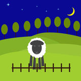 Night landscape with sheep. One cute sheep standing near the low fence with eyes screwed up and fears to jump, green hills with trees behind it, dark navy blue Royalty Free Stock Photos