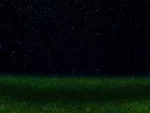 Night   landscape   sky  stars  constellations Royalty Free Stock Photos