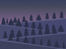 Night landscape with snow-covered Christmas trees in a flat style. Stock Image