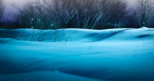 Night landscape with snow Royalty Free Stock Photo