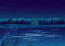 Night landscape. With stars and pond Royalty Free Stock Photos