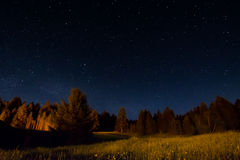 Free Night Landscape Under Starlight Stock Photos - 94256923