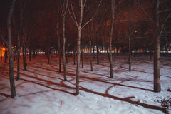 Night landscape in winter city Royalty Free Stock Image
