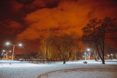 Night landscape in winter city. Park with lights Stock Photography