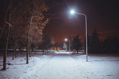 Night landscape in winter city. Park with lights Royalty Free Stock Images