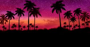 Night Landscape With Palm Trees, Against The Backdrop Of A Neon Sunset Royalty Free Stock Photos