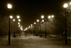 Night Lane With Street Lamps Royalty Free Stock Photography