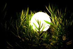 Night lantern in a grass 2 Royalty Free Stock Photo
