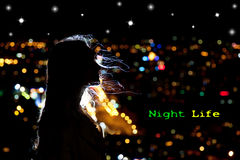 Night life Stock Photography