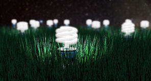 Night Light Royalty Free Stock Image
