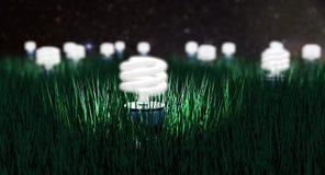 Night Light. Growing some Green light bulbs Royalty Free Stock Image