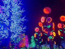 Night Light Show Stock Images