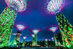 Night light show at Supertree Groveis in Singapore Stock Photo