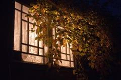 Night light window Royalty Free Stock Photo