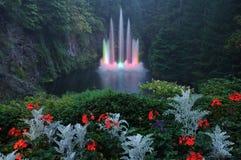 Night lighting of fountain Royalty Free Stock Photos