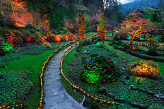 Night lighting of garden. Beautiful garden night lighting scene in butchart gardens, victoria, british columbia, canada Royalty Free Stock Image