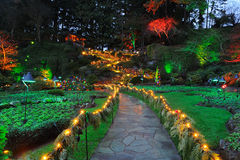 Night lighting of garden. Beautiful garden night lighting scene in butchart gardens, victoria, british columbia, canada Royalty Free Stock Photography