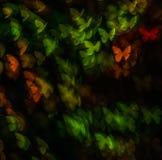 Night lights bokeh butterfly shape, defocused bokeh lights, blur Stock Photo