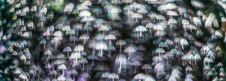 Night lights bokeh umbrella shape, defocused bokeh lights, blurr Royalty Free Stock Photos