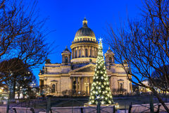 Night lights of the Christmas tree in front of St. Isaac's Cathe Stock Photo