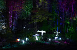 Night lights show `Inspiration` in Ostankino garden city park. Hundreds of lights in the forest. Amazing 3d light and laser illumi Stock Images