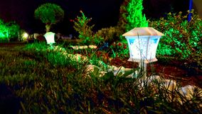Night little lamp blue green concert garden. Trees crops grown brown Royalty Free Stock Photo