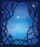 Night magic background. Night magic scene with fireflies and running squirrel. Place for your message in the middle. EPS10 Stock Images