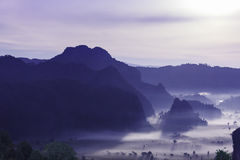 Night mist cover tree and mountain At Phu Lang Ka Stock Image