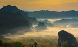 Night mist cover tree and mountain At Phu Lang Ka Stock Images