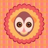 Night monkey gurukuli. Royalty Free Stock Photos