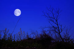 The night of the moon. Night full moon in the sky Royalty Free Stock Photography