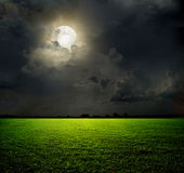 Night and the moon. On a green field Stock Photography