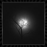 Night moon Royalty Free Stock Image