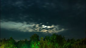 Night moon rises on the horizon and trees on the stock video footage