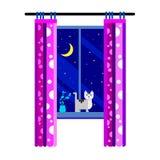Night moon sky background window vector light illustration cat Stock Photography