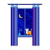 Night moon sky background window vector light illustration cat Stock Image
