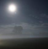 Night moonscape. Stock Photos