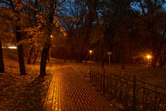 Night in Moscow park Royalty Free Stock Photography