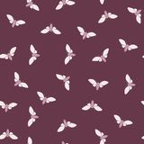 Night moth seamless pattern Stock Images