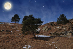 Night in the mountains. Full moon in the mountains Royalty Free Stock Photography