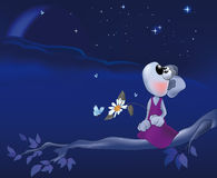Night a mouse a chamomile love Stock Photo