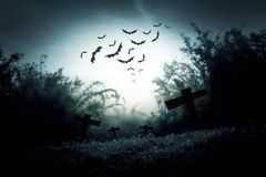 Night nature and ghost illustration Royalty Free Stock Photos