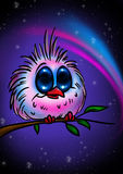 Night owl bird Stock Photos