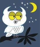 Night owl cartoon. Cartoon showing white owl in tree at night Stock Photo