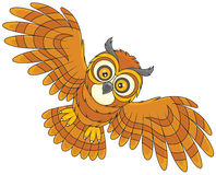 Night owl flying Stock Photo