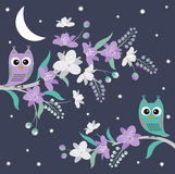 Night Owls Royalty Free Stock Image